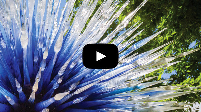 Click here to view an exclusive teaser video for CHIHULY
