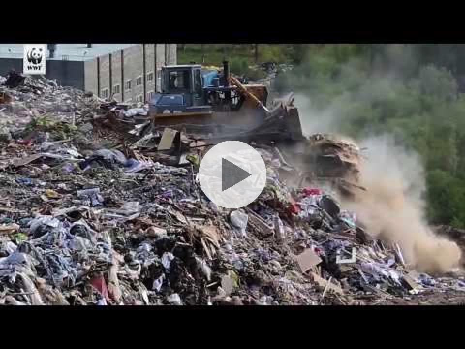 Emergenza inquinamento da plastica