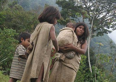 Kỳ lạ bộ tộc sống giữa rừng, cực kỳ thông thái - Ảnh 1