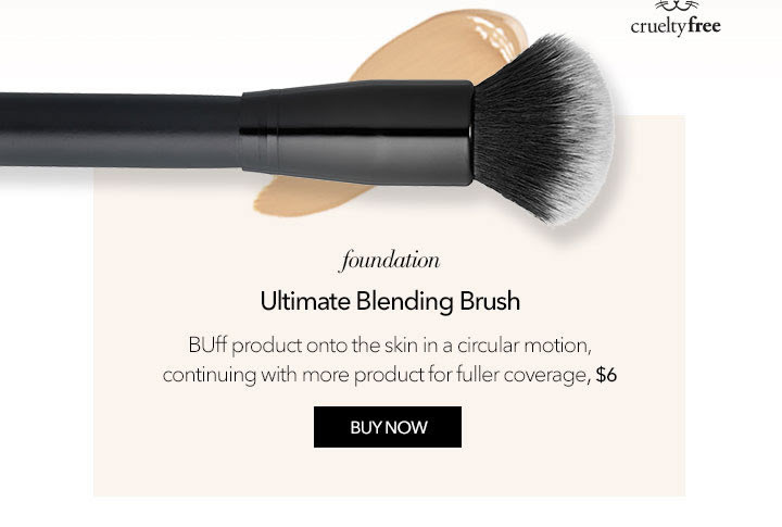 The brushes you need now!