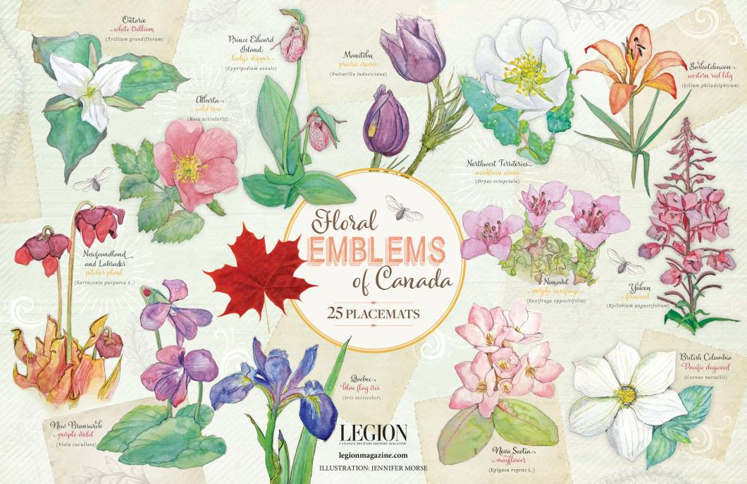 25 pack of Floral Emblems Paper Placemats