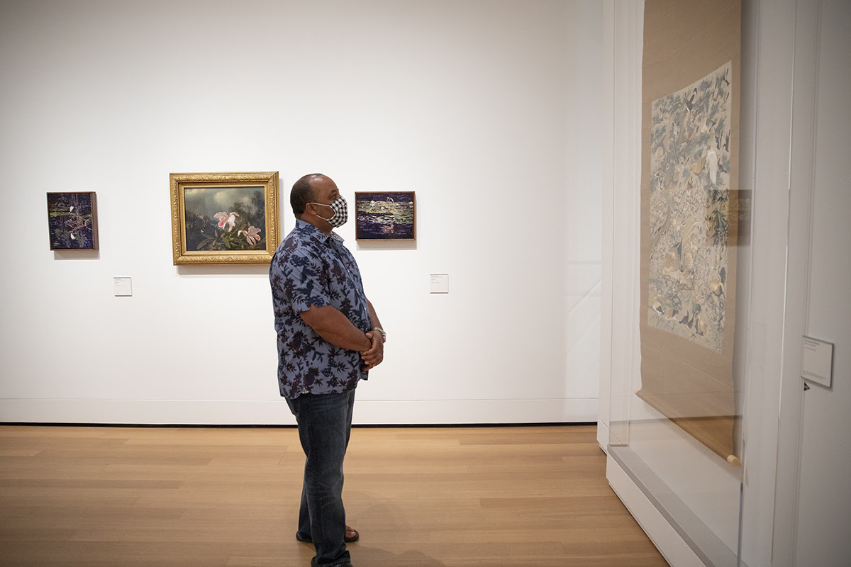"Visitor viewing art in the exhibition, ""James Prosek: Art, Artifact, Artifice"""