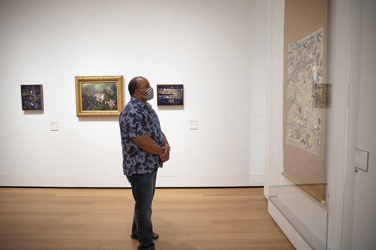 "Visitor viewing art in the exhibition, ""James Prosek: Art, Artifact, Artifice"""
