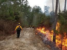veteran fire corp