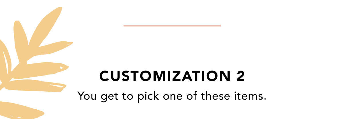 CUSTOMIZATION 2 | You get to pick one of these items.