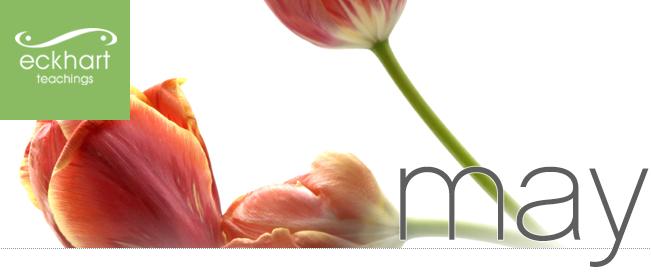 May - Eckhart Teachings Newsletter