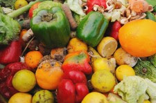 Food waste: prevention in the service sector would have major environmental benefits