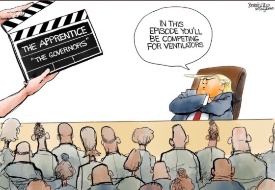 trump apprentice