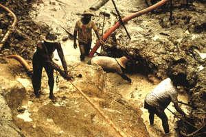 Les orpailleurs clandestins opérant sur le territoire yanomami polluent l'environnement dont les Yanomami dépendent pour leur survie.