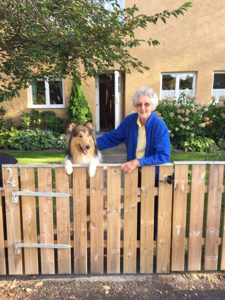 En dam med hund, en collie, vid grinden till sin trädgård