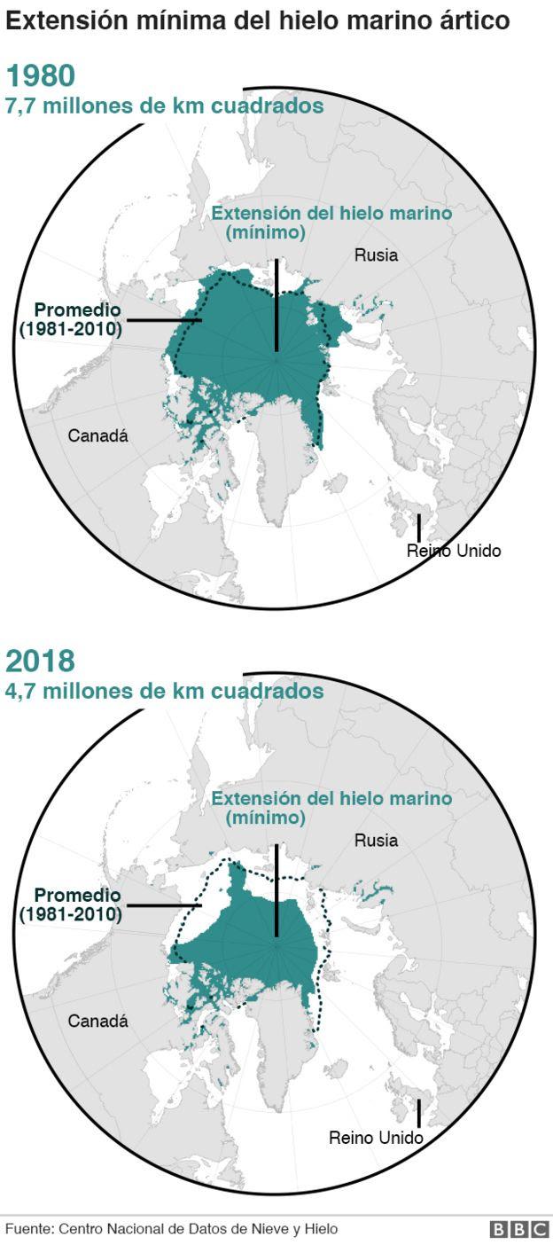 Hielo marino artico