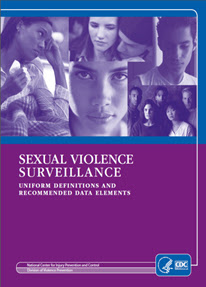 Cover of Sexual Violence Surveillance