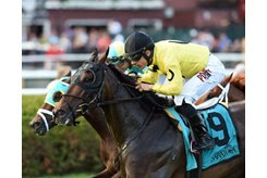 Mr Havercamp wins the Forbidden Apple at Saratoga Race Course
