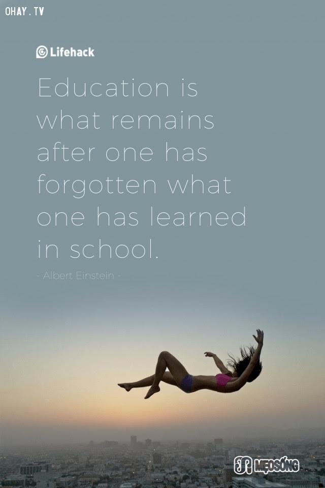 3. Bản chất của giáo dục chính là những gì còn lại sau khi người ta quên hết những thứ đã được học ở trường,albert einstein,câu nói hay,triết lý sống,câu nói ý nghĩa
