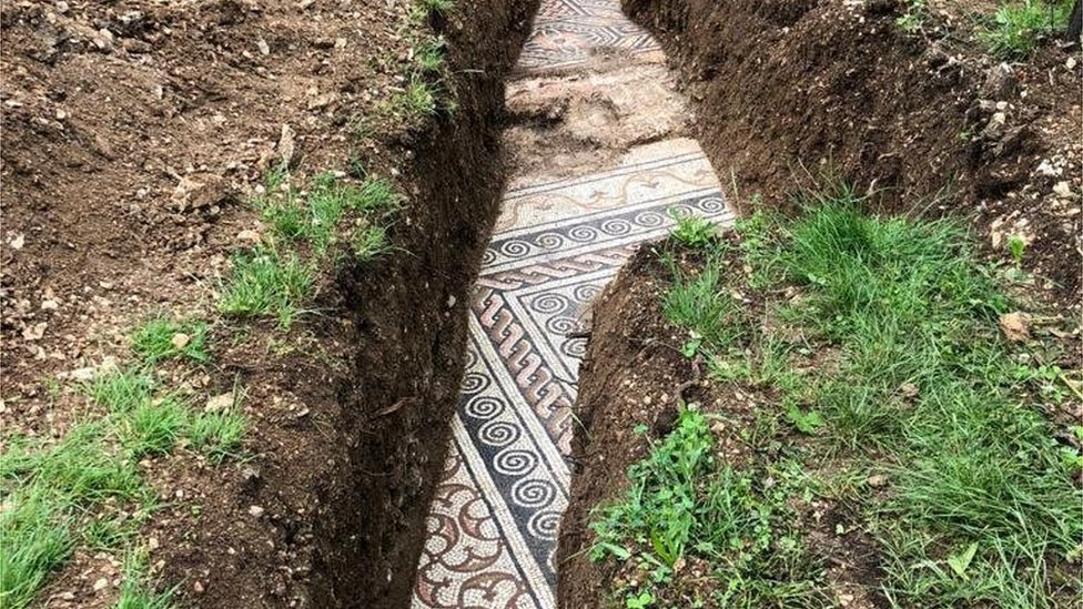 Roman mosaic floor found under Italian vineyard