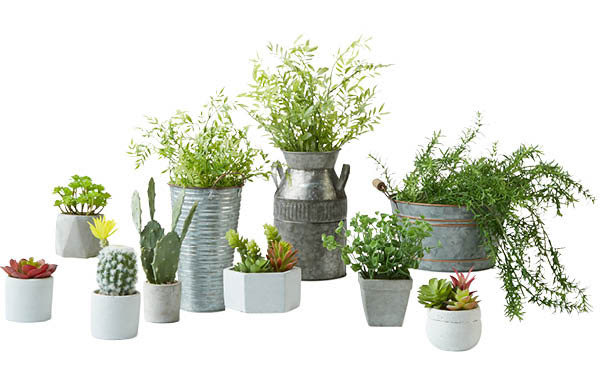 All Garden Collection Greenery & Containers