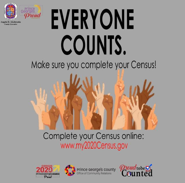 Everyone counts census eng