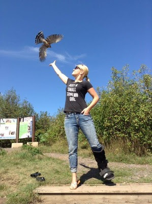Bird Release at Hawk Ridge