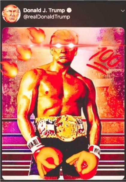 trump fighter colorized.JPG