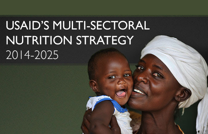USAID's Multi-Sectoral Nutrition Strategy. Photo of a woman holding a baby.
