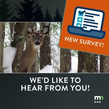 take our survey with a deer in the winter forest and a clipboard graphic with MN DNR logo