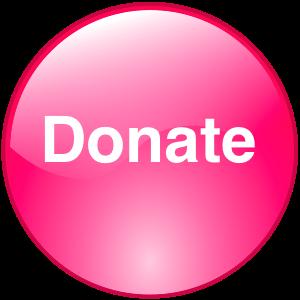 DonateButton Icon Pink