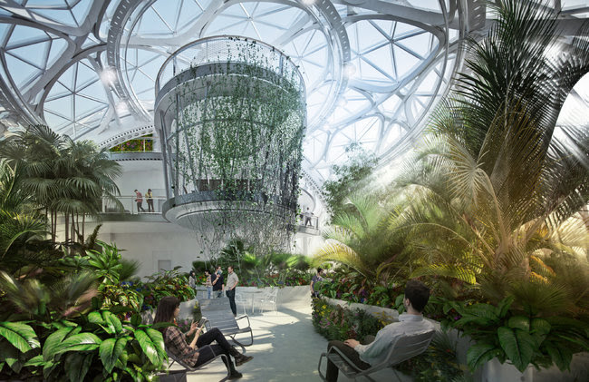 Renderings of the spheres at Amazon that show what the interiors are expected to look like.