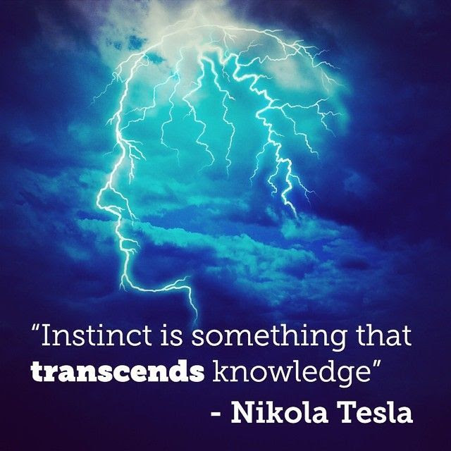 Image result for instinct is something that transcends knowledge