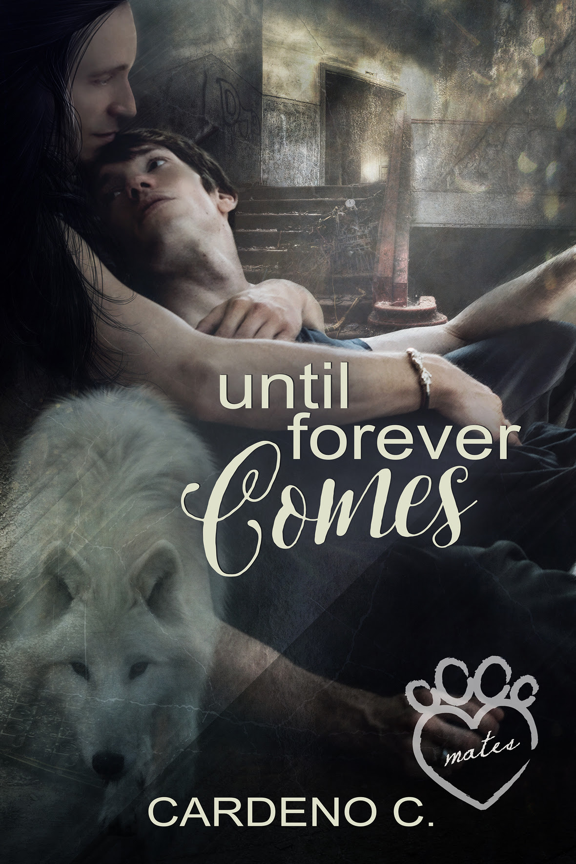 untillforevercomes-cardenoC-customcover-jayaheer2015-1800x2700