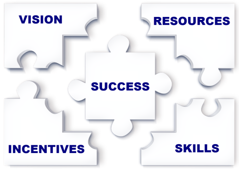 Puzzle pieces showing network assets: vision, resources, incentives, skills = success.