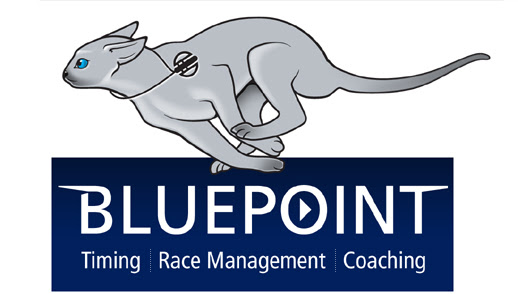 bluepoint cat