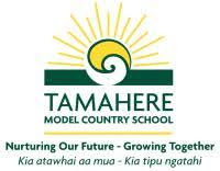 Image result for tamahere school