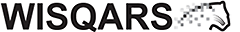 WISQARS Logo