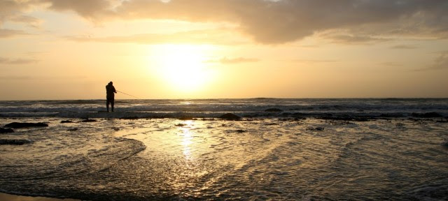 w640_410856_sunsetshell3.jpg