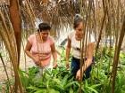 Bolivia_Amazon_ForestConservationAndWEE_September2019_DSCN2643_1_960x640-140x105.jpg