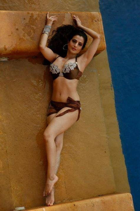 Image result for amisha patel hot