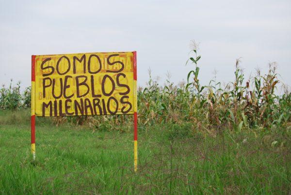 Disculpen las molestias: indígenas liberando a la madre tierra
