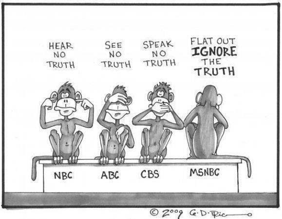 cartoon ridiculing the MSM