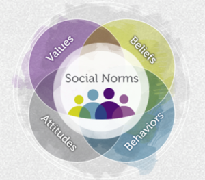 Relationships between social norms and violence