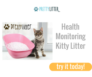 10% OFF Pretty Litter: The Col...