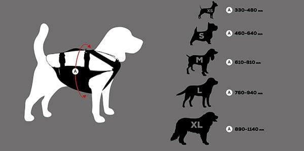 DOG-PFD-Sizes_07