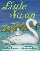 Little Swan by Jonathan London and Kristina Rodanas