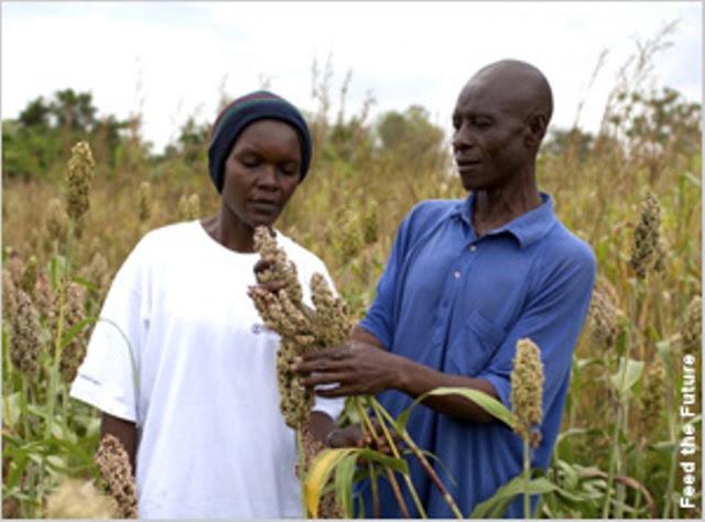 200 millones de perosnas menos con hambre en el mundo