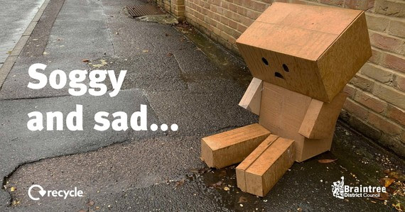 soggy cardboard