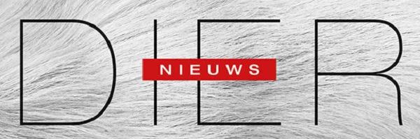 Dier//Nieuws
