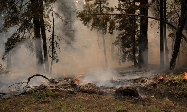 Fire tornadoes, haze, clouds: US blazes create their own weather systems
