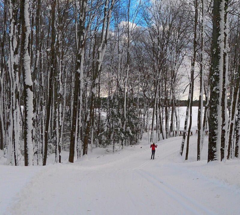 Cross-country skiing at Pineland Farms.