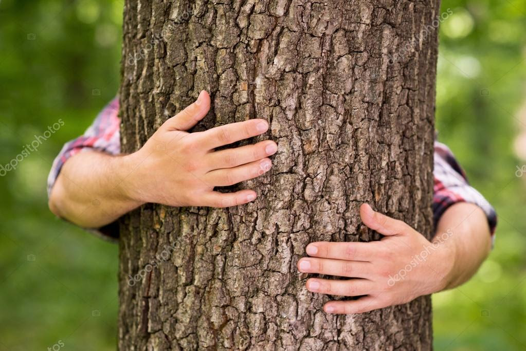 depositphotos 47855031-stock-photo-hands-hugging-tree
